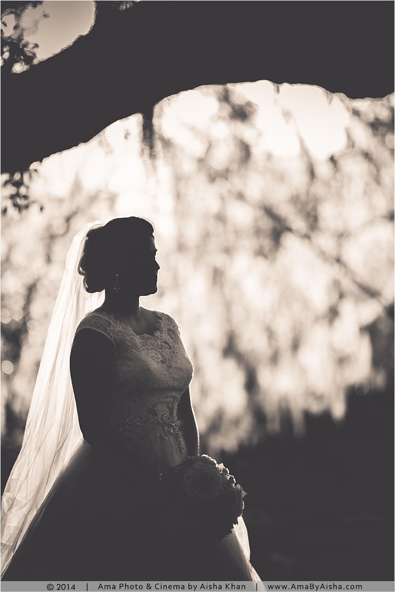©2014 | www.AmaByAisha.com | Texas Mossy Trees Bridal Session
