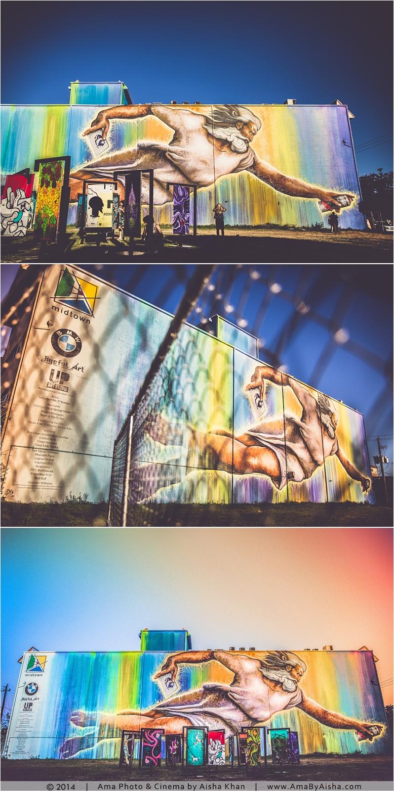 ©2014   www.AmaByAisha.com   Preservons la Creation   Houston Art Scene by Aisha Khan / Ama Photography & Cinema